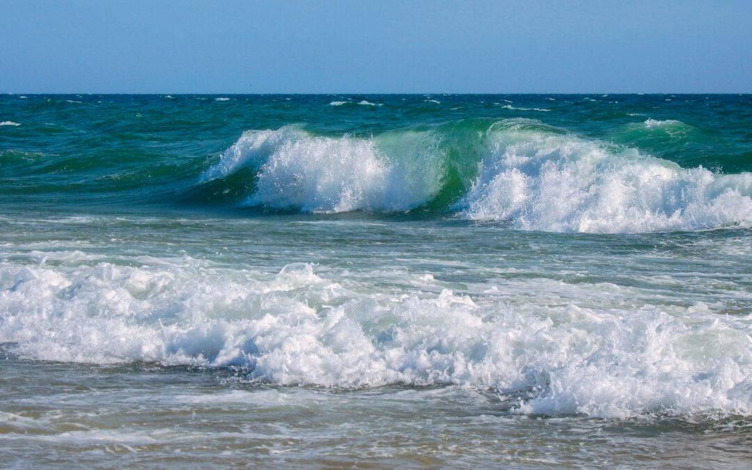 Sistemas costeros marinos