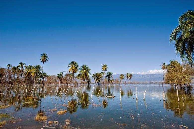 MEDIOAMBIENTE: Variaciones del nivel de agua en el Lago Enriquillo